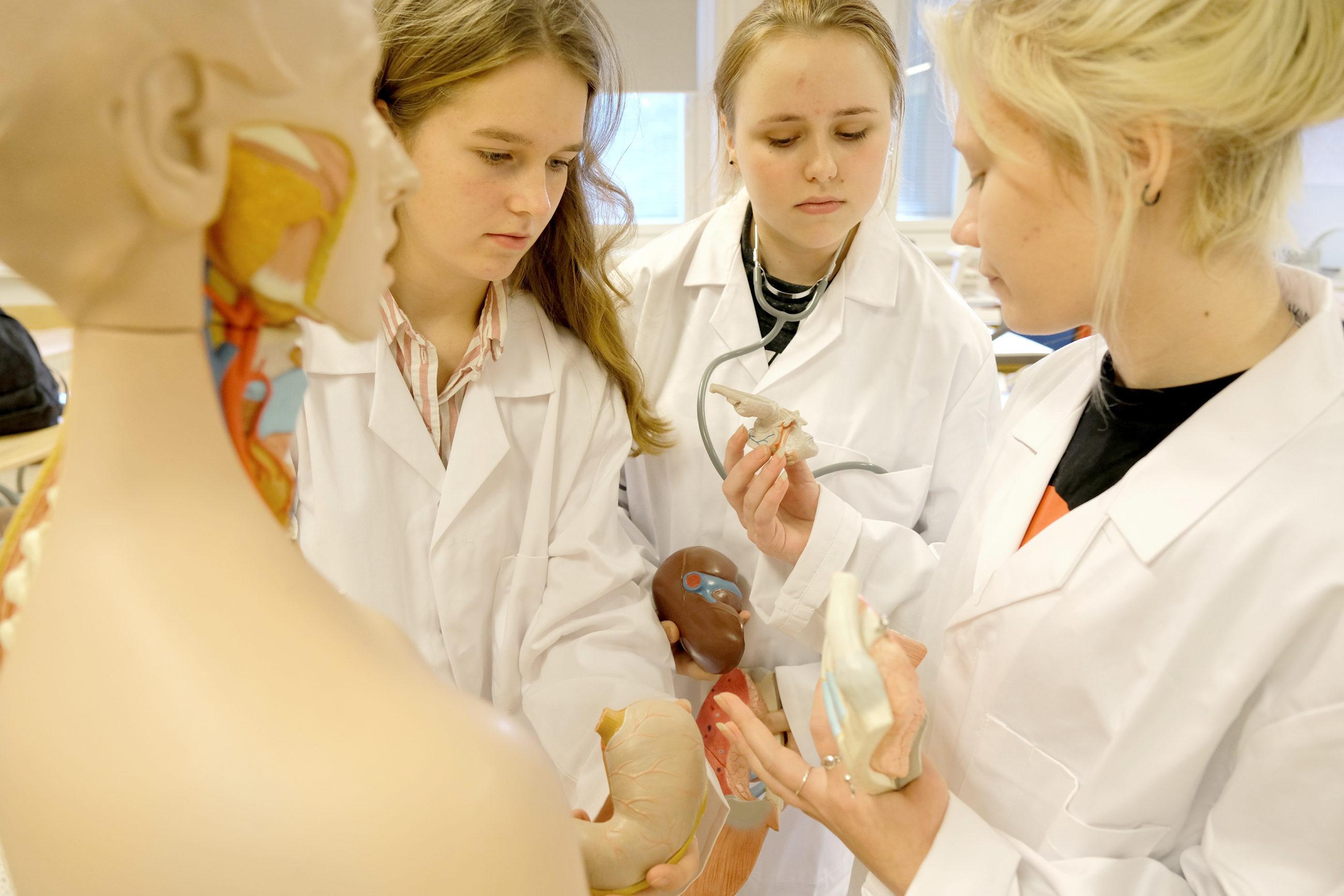 Kolme henkilöä tutkii yhdessä lääketietellisiä havaintovälineitä, henkilöillä päällään valkoiset laboratoriotakit, etualalla havaintomallinukke ihmisen anatomiasta.